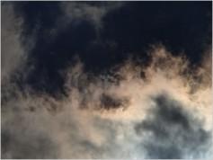 大気汚染が自閉症の子供を増やしている!?
