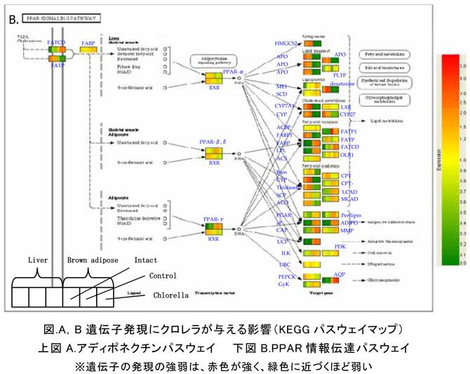 image114_2