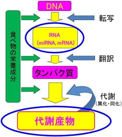 image121_1