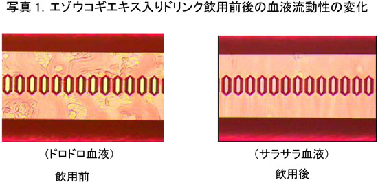 image30_2