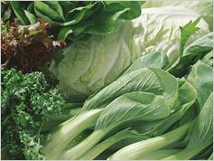 野菜のカロテノイドは高齢者のクリスタルな知能を高める
