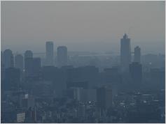 ビタミンB群は、大気汚染から心臓を守ってくれる